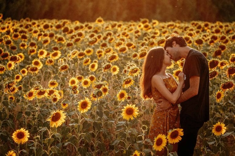 Paarshooting-Toskana-04-Italy-Engagement-Destination-Wedding-Photographer-Elopement-Packages-Tuscany-Sunset-A-Love-Above-Sunflower-Field-couple