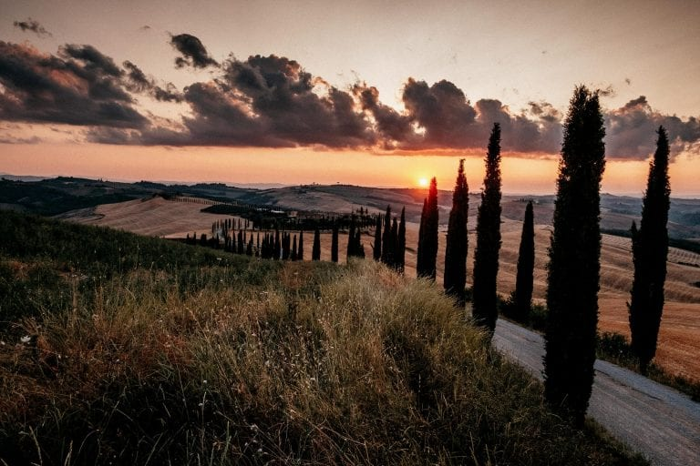 Paarshooting-Toskana-16-Italy-Engagement-Destination-Wedding-Photographer-Elopement-Packages-Tuscany-Sunset-A-Love-Above-Sunflower-Field-candy-sky