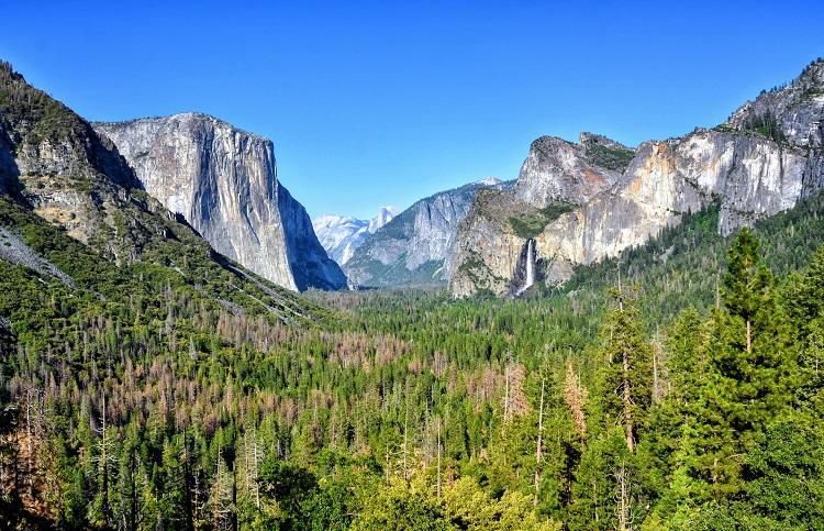 anukrati-omar-yosemite-elopement-wedding-photography-california-elope-outdoor-adventure-destination-intimate-ceremony-tunnel-view