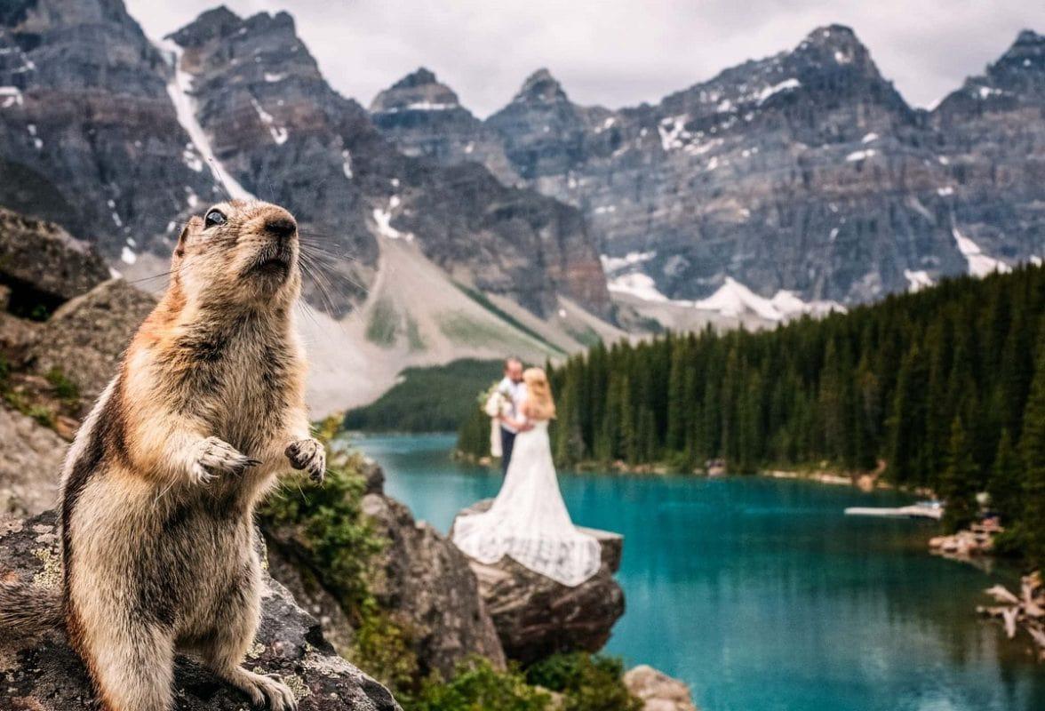 10-reasons-to-elope-banff-canada-lake-louise-moraine-intimate-destination-wedding-alberta-elopement