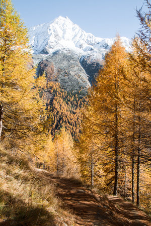 best-places-elope-in-switzerland-elopement-wedding-planner-coordinator-destination-intimate-small-adventure-mountain-wallis-nao-photographer