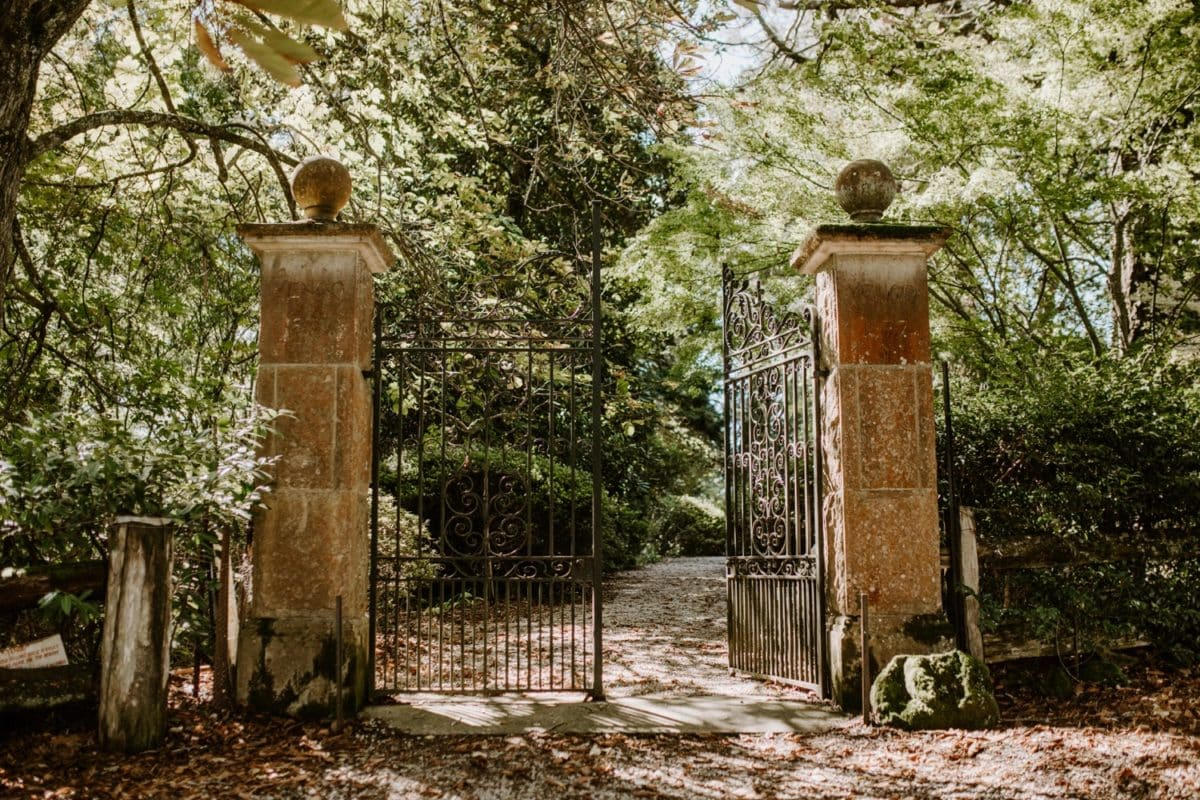 mt-wilson-blue-mountains-elopement-wedding-destination-packages-coronavirus-intimate-outdoor-autumn-fall-laid-back-gardens-hayleyrafton