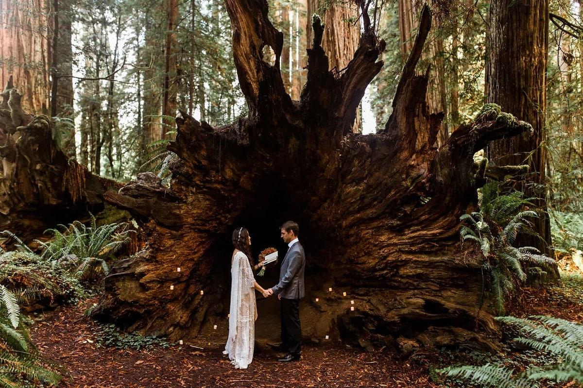 redwoods_elopement_photographer-washington-pnw-elope-forest-adventure-nature